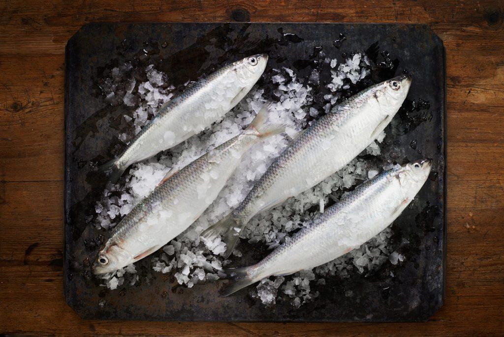 Österlen.se recommends buying fresh herring at Sjofolket in Simrishamn