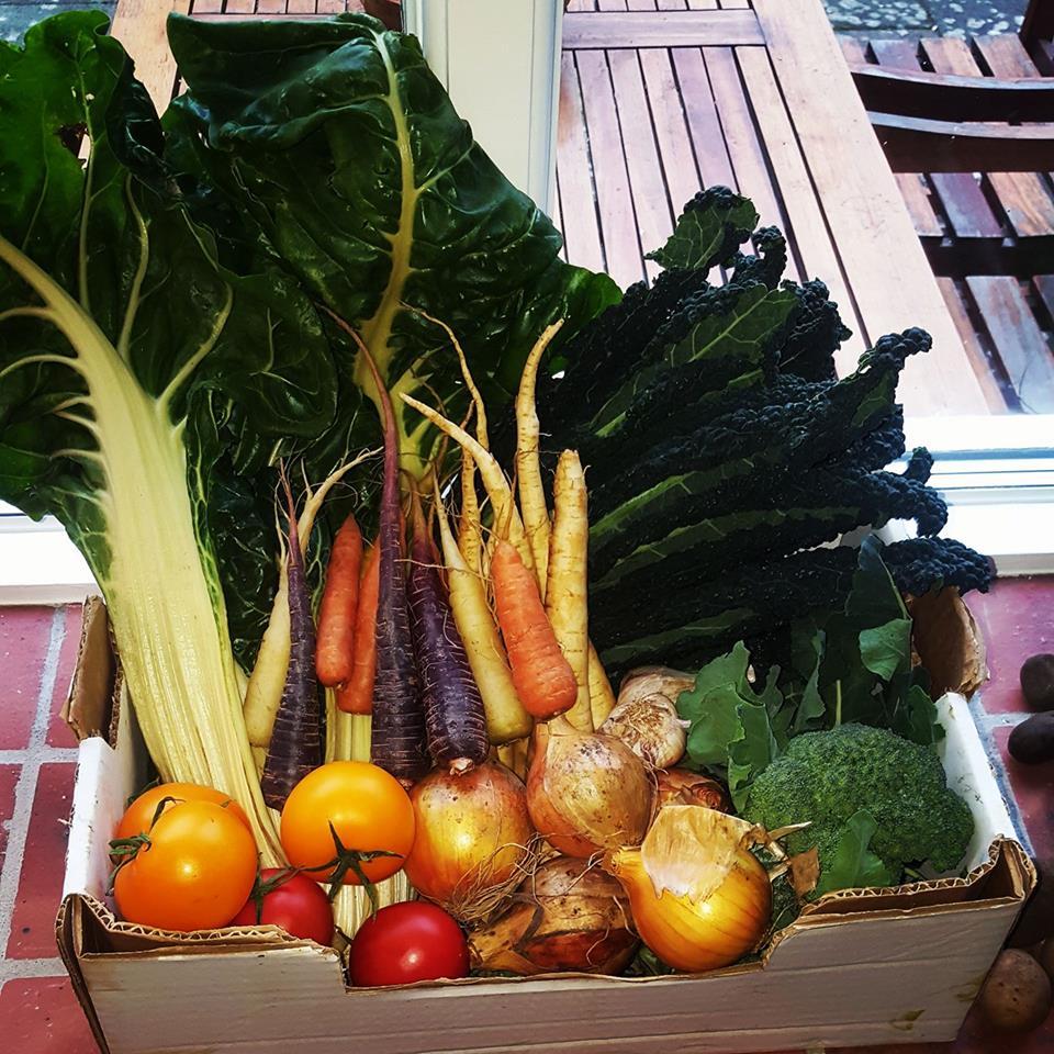 Smedjan mat och logi - Österlen
