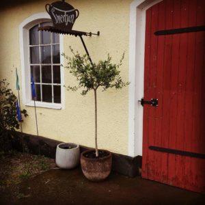 Forging food and accommodation - Österlen