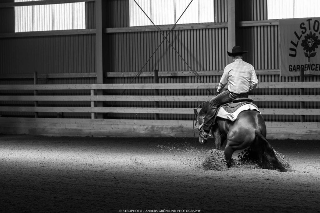 Healthy Valley Ranch reining and western riding