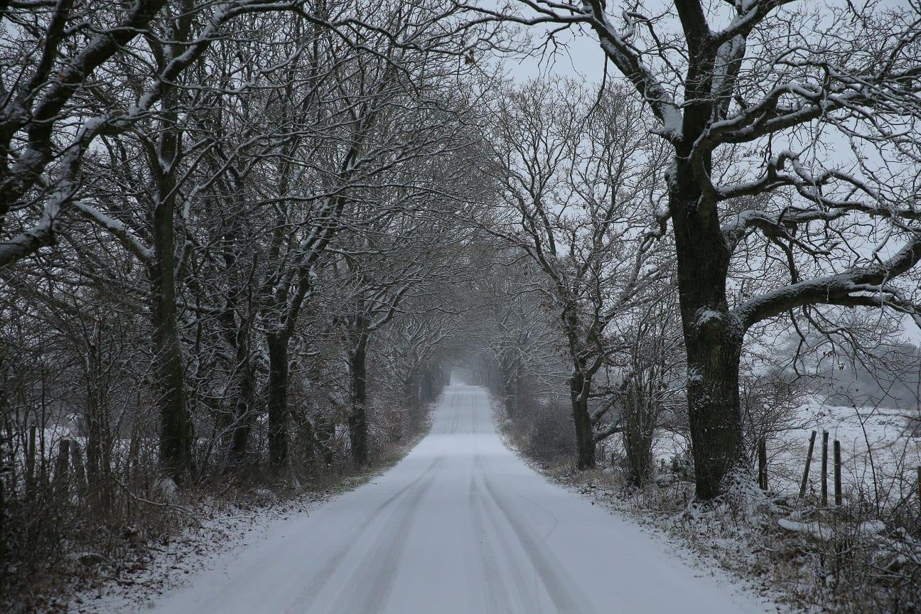 a white Christmas on osterlen österlen.se
