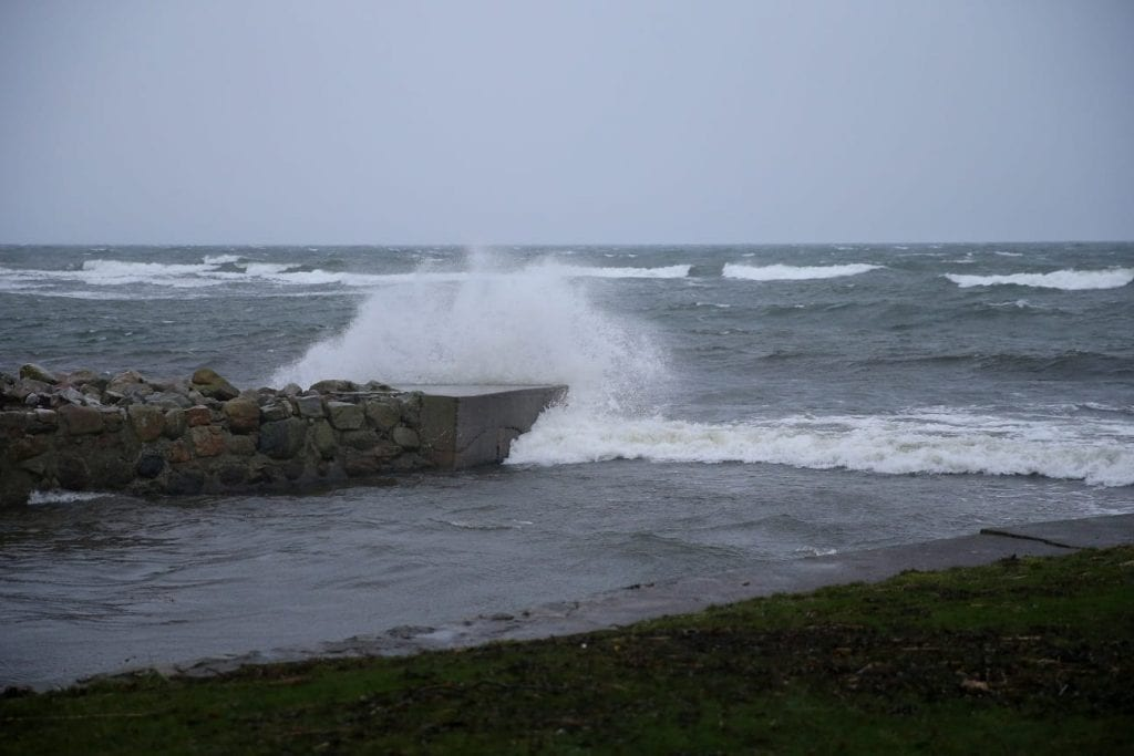 Healthy winds in Simrishamn