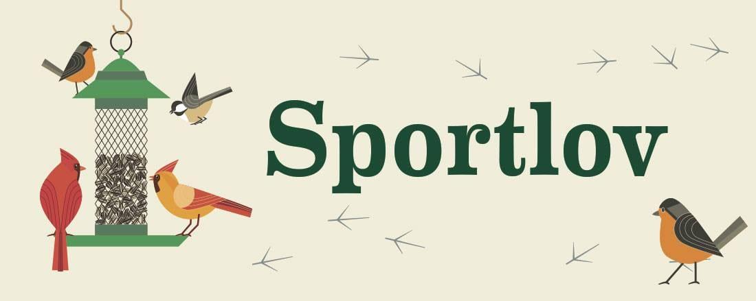 Kivik's Temple - Sports Law