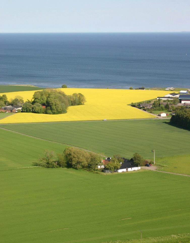 Sjöbacka farm
