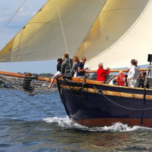 DSC 5463 österlen.se