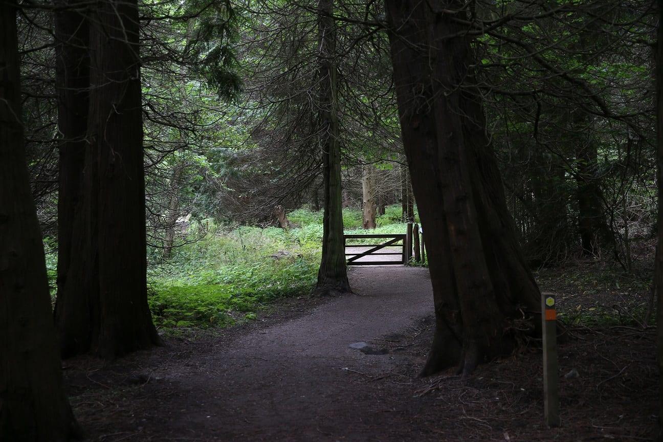 en morgon i nationalparken österlen.se