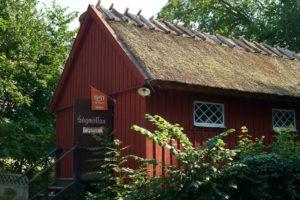 Café sawmill