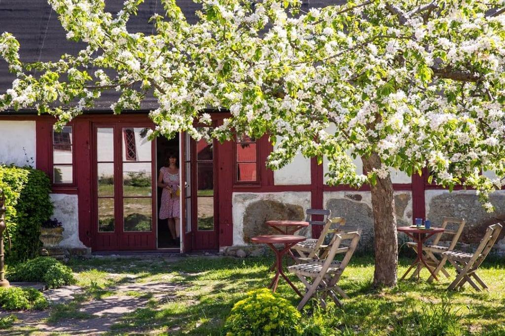 Mysigt skön trädgård på STF Brantevik Råkulle Vandrarhem