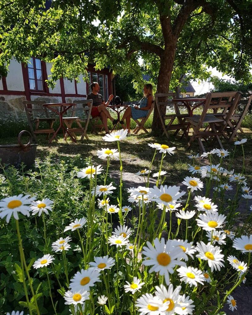 Härlig trädgård på STF Brantevik Råkulle Vandrarhem