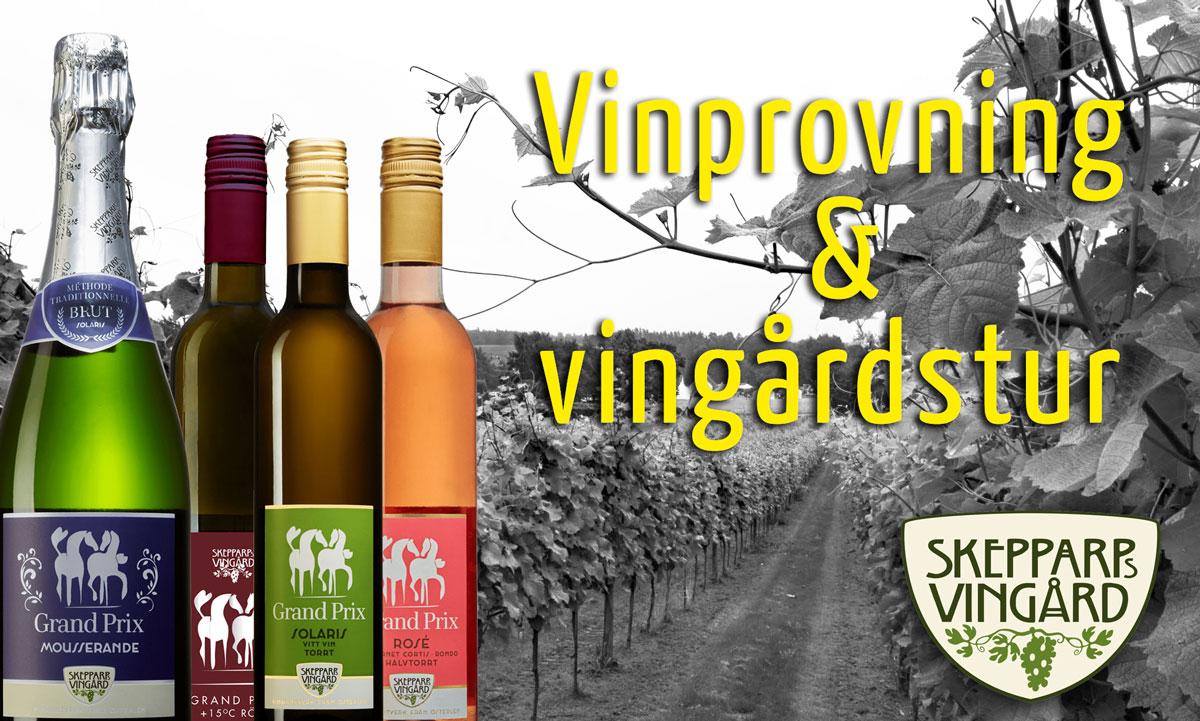 Vinprovning och vingårdstur