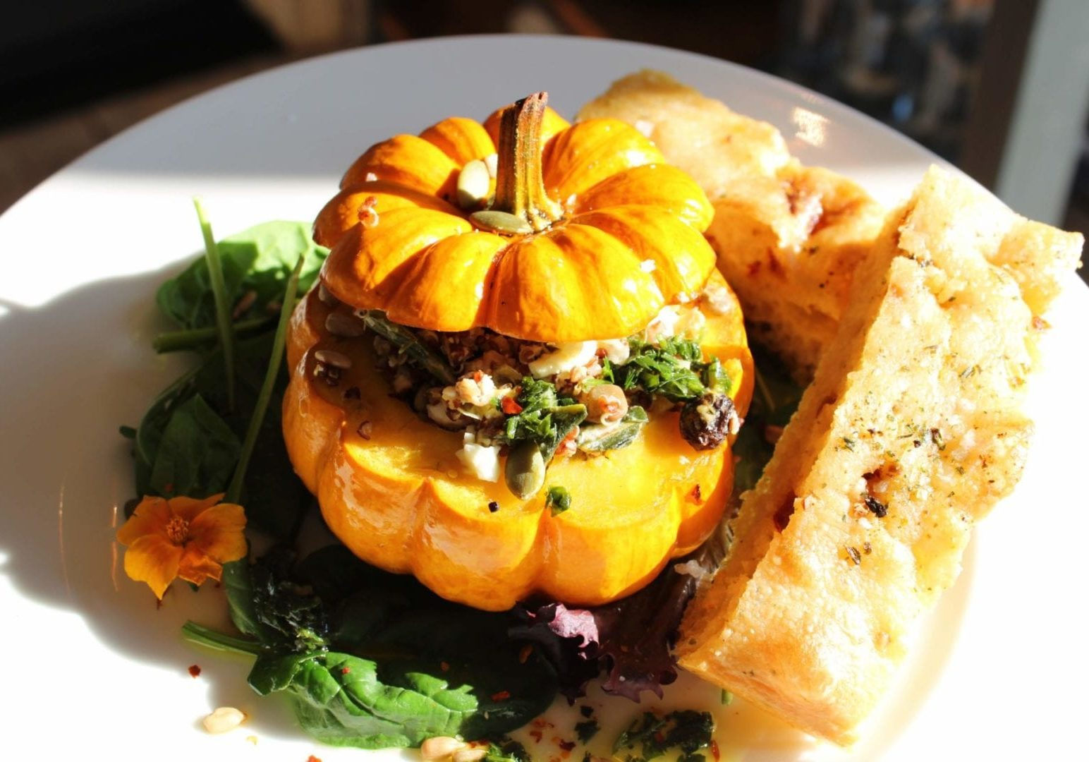 Autumn harvest gives way to cozy lunches