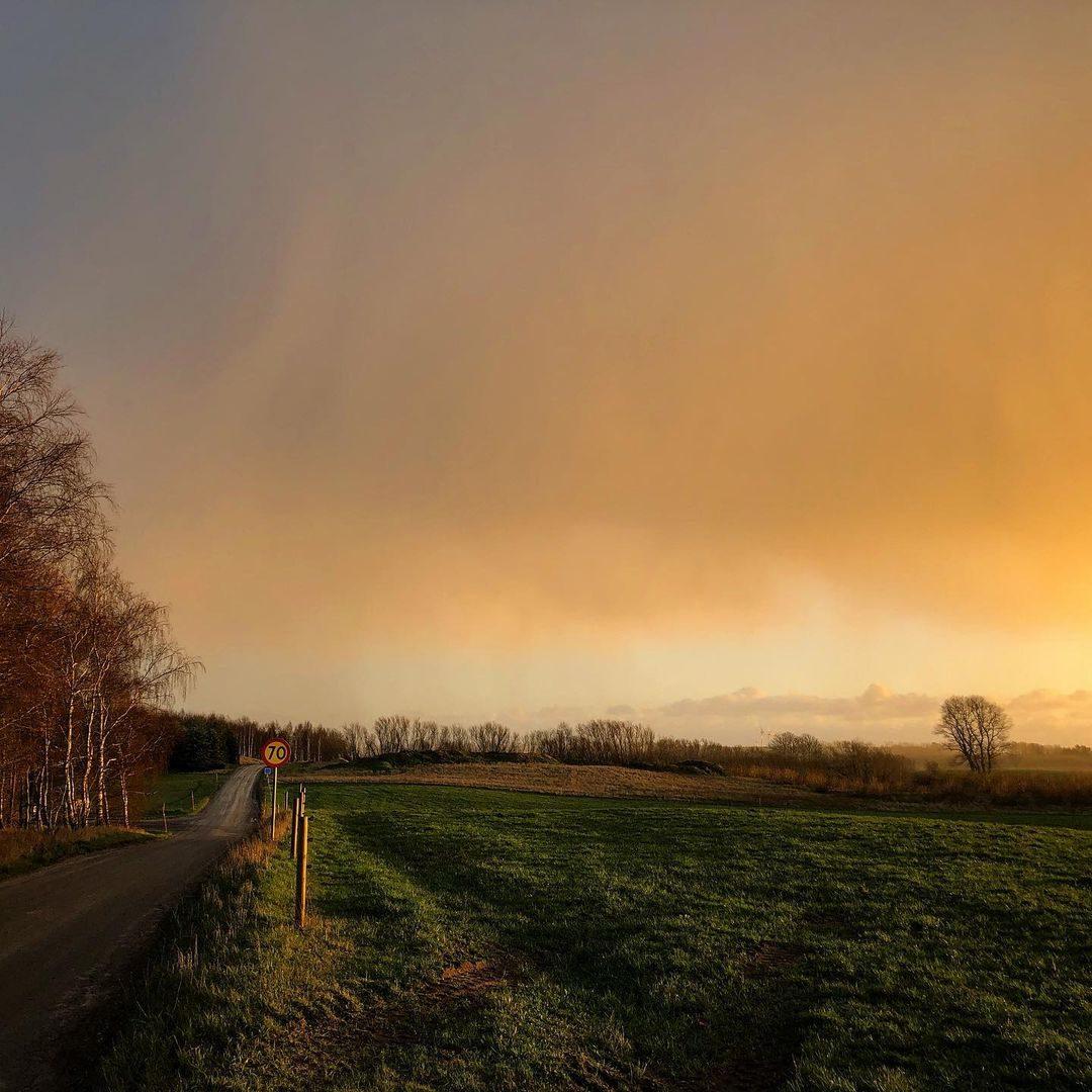 70 väg på österlen - årskrönika 2020