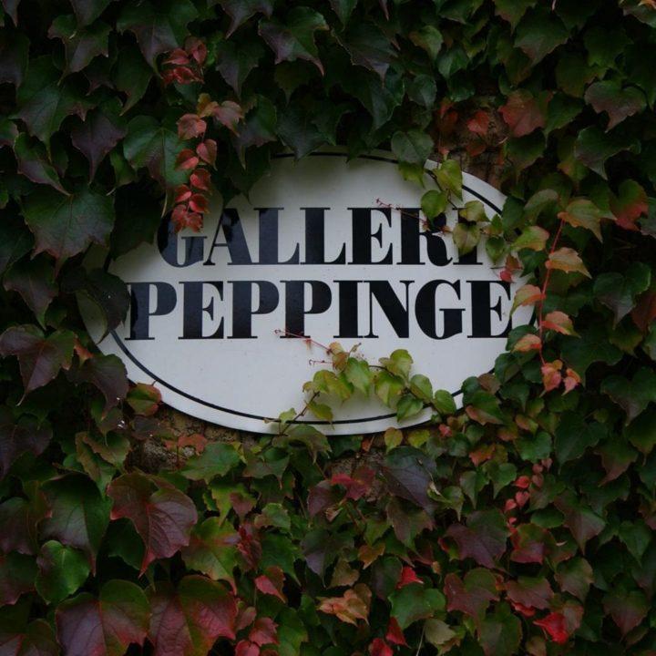 Galleri Peppinge