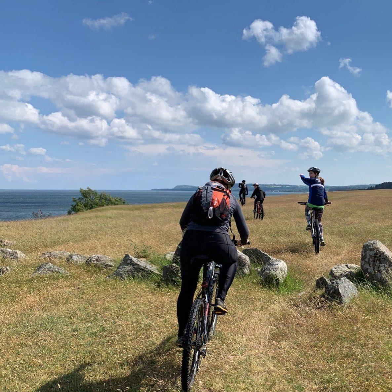 Mountain bike with adam on Österlen's most beautiful trails - villa gina