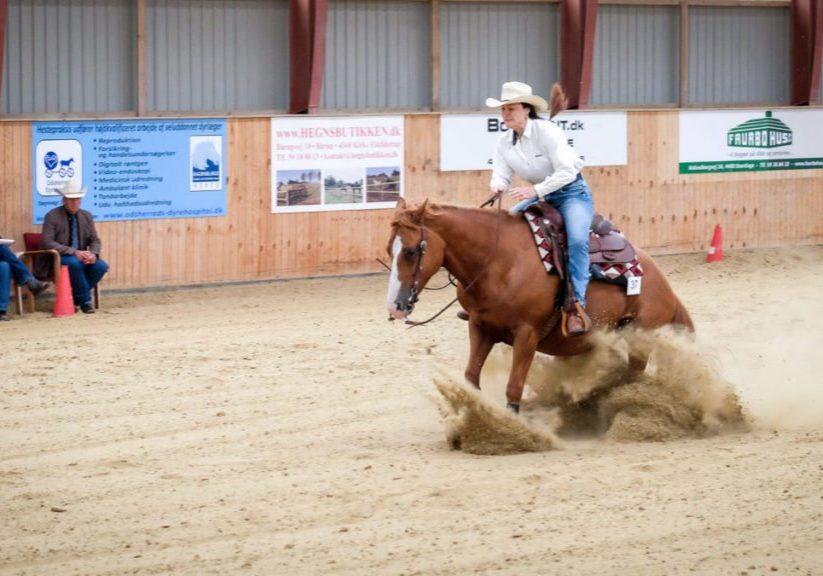 Hälldala Ranch reining och westernridning